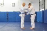 bbjj_promotions-daniel-gracie_20121215_014