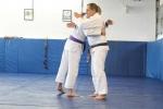 bbjj_promotions-daniel-gracie_20121215_021