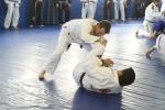 bbjj_promotions-daniel-gracie_20121215_090