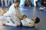bbjj_promotions-daniel-gracie_20121215_092
