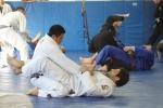 bbjj_promotions-daniel-gracie_20121215_094