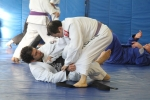 bbjj_promotions-daniel-gracie_20121215_095