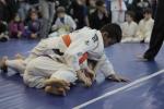 bbjj_in-house-tournament_20121208_001